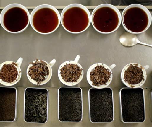 Tea for tasting