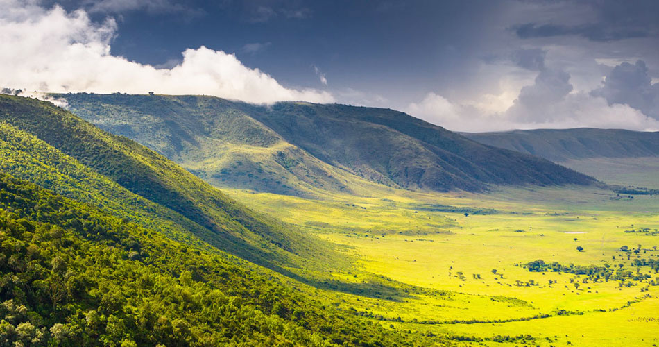 Focus on Africa – Tea in Tanzania