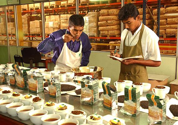 Growing demand for tea across Ahmad Tea's markets sees new offices open in Colombo, Sri Lanka