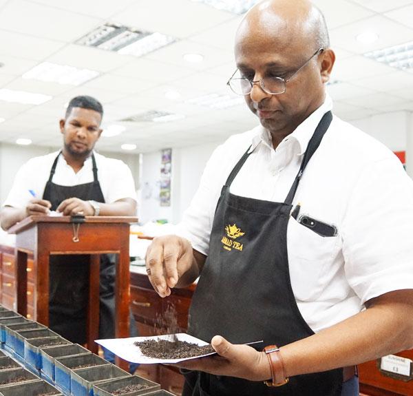 Ahmad Tea Sri Lanka