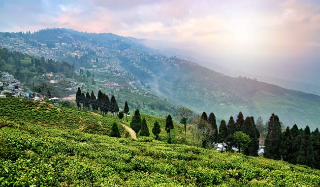 Darjeeling-Hills