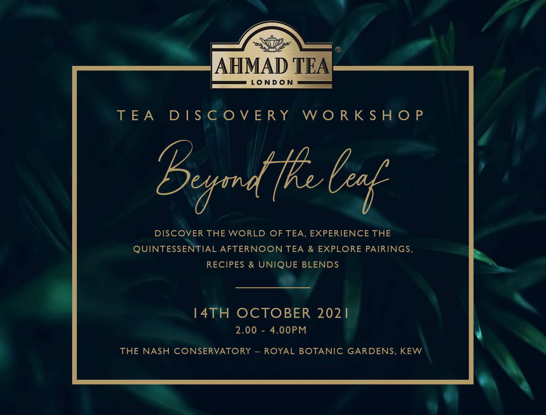 Discover the world of tea,experience the quintessential afternoon tea & explore pairings.